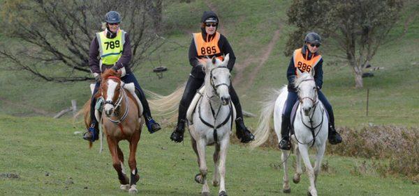 Tom Quilty Endurance Ride @ Collie Race Club | Collie | Western Australia | Australia