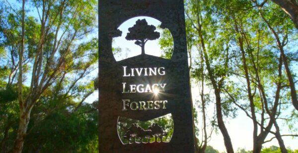 Tour of Wellington Dam Living Legacy Forest @ Living Legacy Forest